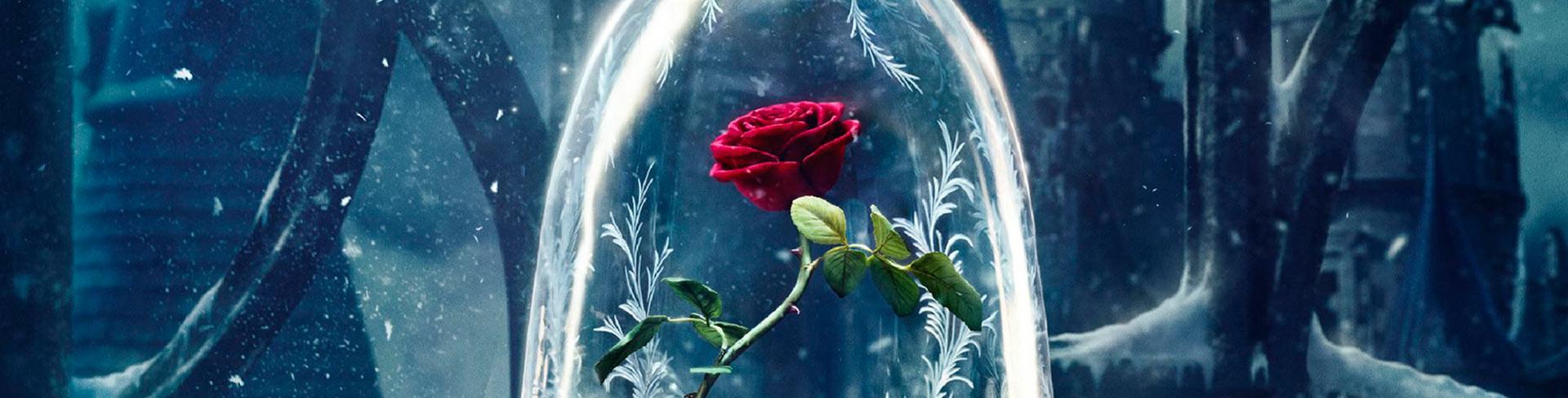Comprar Rosa Bella y la Bestia